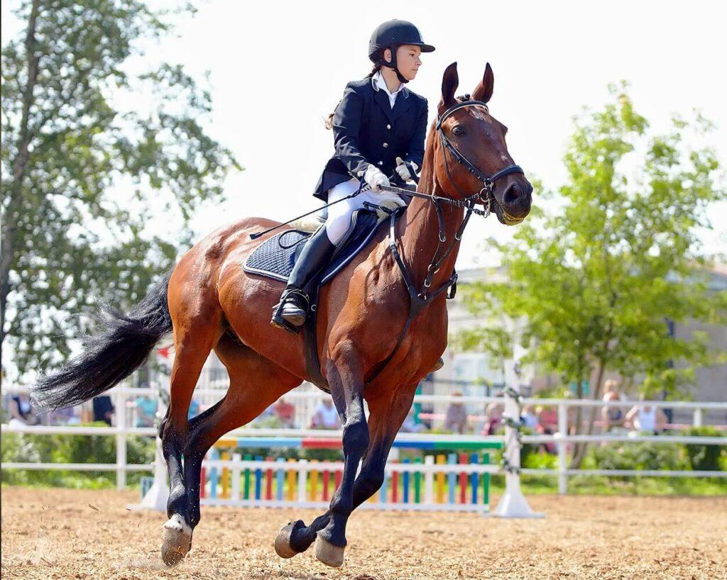 ARTIKEL:  Halmpillerne panerer hestepærer